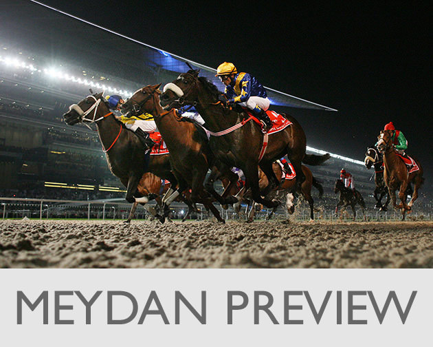 Laura-King-MEYDAN-Preview
