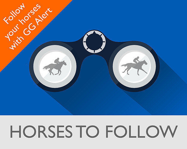 Horses-to-Follow