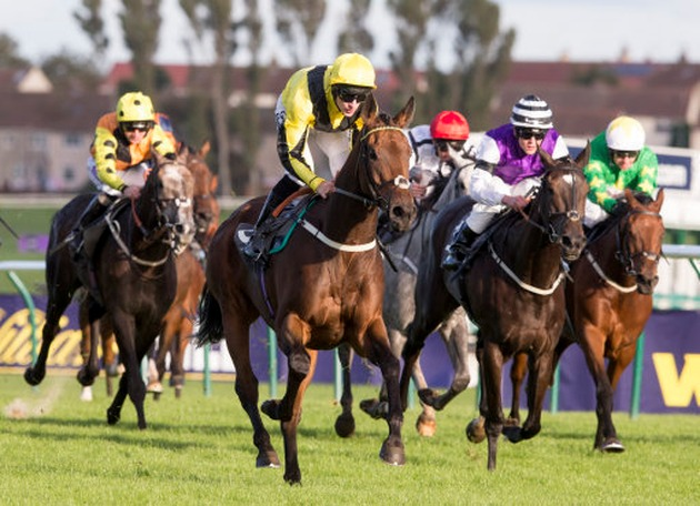 image-left-align ayr gold cup